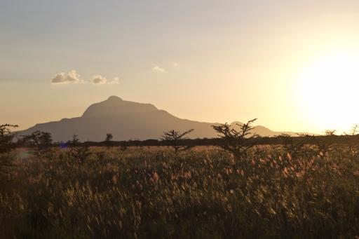 evening-hills-3